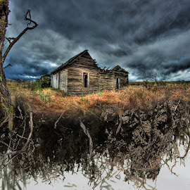 Uprooted by Eric Demattos - Buildings & Architecture Decaying & Abandoned ( eric demattos, cottage, house, surreal, abandoned )