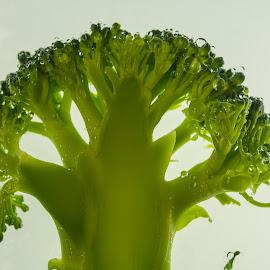 broccoli by Claudia Weber-Gebert - Food & Drink Fruits & Vegetables ( abstract, vegie, fruit, food, green, drink, vegetables, broccoli )
