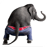 Dancing Talking Elephant APK Image