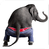 Download Android App Dancing Talking Elephant for Samsung