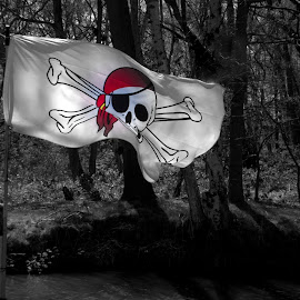 Flag by Ann Seedhouse - Artistic Objects Signs ( flag, scull & crss bones, canel, trees, pirate )