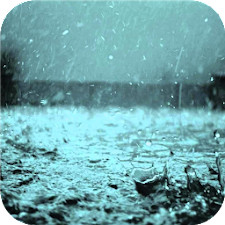 Rain. Live wallpapers