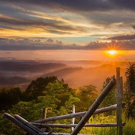 Kokol Hill Golden Hour by Ervin Moung - Landscapes Sunsets & Sunrises ( bamboo, hill, sunset, hills, sabah, kota kinabalu, hill view, malaysia, landscape, borneo,  )