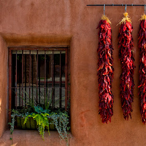 Red Chili Peppers by Terry Scussel - Buildings & Architecture Other Exteriors ( red chili peppers, albuquerque, adobe )
