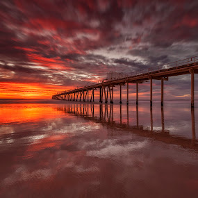 Into The Sun by Steve Badger - Landscapes Sunsets & Sunrises ( australia, new south wales, jetty, travel, sunrise, fingal )