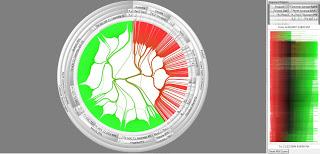 Using Visual Analysis to Detect Call Center and BPO Fraud