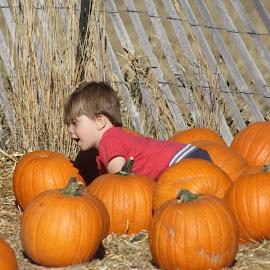 My first Pumpkin Patch... by Snow Losh - Babies & Children Children Candids