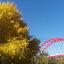 Red bridge :) by Nicoleta Nastasa - City,  Street & Park  City Parks