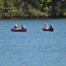 Boating at Cheraw State park. by Terry Linton - City,  Street & Park  Street Scenes