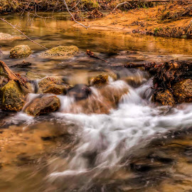 Raging Stream by Diane Ljungquist - Landscapes Waterscapes