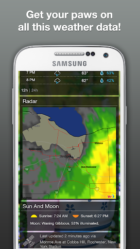 Wildlife Weather - screenshot