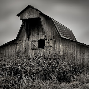 Rural Arkansas       by Joel Mcafee - Buildings & Architecture Other Exteriors