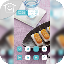 Exquisite lovely sushi theme