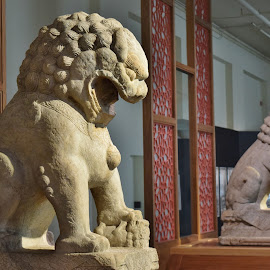 A Pair of Guardian Lions at the Entrance by John Tuttle - Buildings & Architecture Architectural Detail ( art, statues, stone, rock, lions, shi, chinese, china )