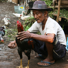 old man showing off his prime cock by Rahmat Nugroho - People Portraits of Men ( indonesian, cockfight, holding, fight, asian, cruel, chicken, hand, indonesia, asia, cruelty, elderly, head, man, culture, animal )