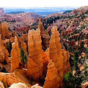 Big Hoodoos!  by Vonelle Swanson - Landscapes Mountains & Hills ( nature, utah, hoodoos, landscape, bryce canyon )