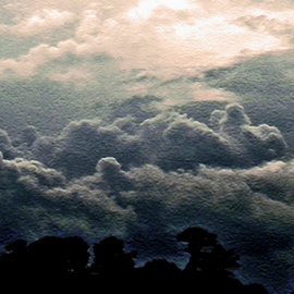 A Coming Storm by Edward Gold - Digital Art Things ( tree tops, digital photography, storm cloudes, cloudes, light cloudes, silhouette, digital art,  )