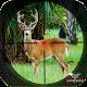 Safari Deer Hunting Africa
