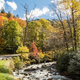 Autumn by Richard Michael Lingo - Landscapes Travel ( autumn, travel, landscape, smoky mountains, river )