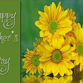 Happy Mother's Day by Dipali S - Typography Captioned Photos ( optical, optics, illustration, motivation, yellow, type, decor, inspiration, card, mother's day, flowers, place, template, element, text, creative, letter, font, art, label, calligraphic, sign, frame, poster, word, typography, letters, graphic, ornate, decorative, captioned, title, words, quote, note, classic, banner, typographic, abstract, icon, decoration, vintage, advertisement, photo, message, motivational, typo, background, artistic, design )