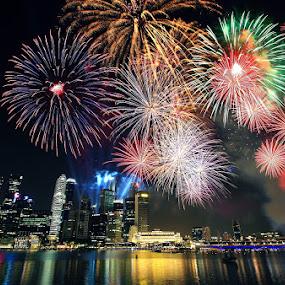 Sparkling Singapore by Alit  Apriyana - City,  Street & Park  Vistas