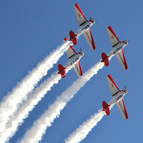 Stuart Air Show by Peg Elmore - Transportation Airplanes ( airplanes, formation, contrail )