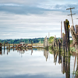Ebey Slough  by Todd Reynolds - City,  Street & Park  Vistas