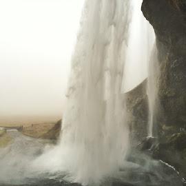 by Tara Bauman - Nature Up Close Water