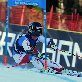 Lara Gut by Igor Martinšek - Sports & Fitness Snow Sports ( maribor 2017, golden fox, giant slalom, gs, lara gut, fis world cup )