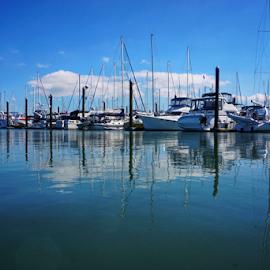 Marina  by Todd Reynolds - Transportation Boats