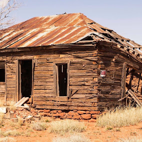 Fixer Upper by Bonnie Davidson - Buildings & Architecture Decaying & Abandoned ( cuervo ghost town, building, photograph, wood, door, windows, architecture, house, prairie, dead tree, new mexico, fixer upper, blue sky, empty, brown, abandoned,  )