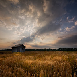 by Ева Йорданова - Landscapes Prairies, Meadows & Fields