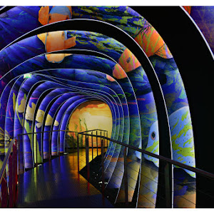 pixoto hsmnt 2012 tunnel at svarovski musemum.jpg