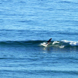 by Robyn Downie - Sports & Fitness Surfing ( surfing, ocean, beach, surf )