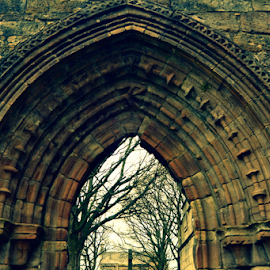 Kilwinning Abbey by Sarka Brichová - Novices Only Objects & Still Life ( walls, cemetery, stone, dead, historic, abbey )