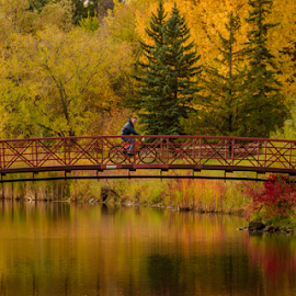 Bike Ride by Garces & Garces - City,  Street & Park  City Parks ( ride, bike, fall colors, park, colorful, color, autumn, fall, autumn colors, paradise )
