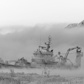 Ice cold  by Benny Høynes - Transportation Boats ( cold, fog, frozen, boat, norway,  )
