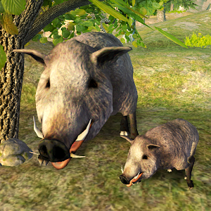 Survive Wild Boar