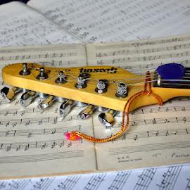 Guitar #4 by Bhaskar Patra - Artistic Objects Musical Instruments ( guitar, key )