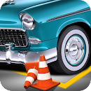 Real Driver Parking Mania icon