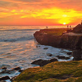 Green and Gold by Derek Gibbins - Instagram & Mobile iPhone ( cliffs, surfer, sunset, moss, ocean, beach )
