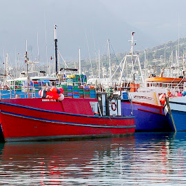 Fishing boats in harbor in HoutBay by Hush Naidoo - Transportation Boats ( cape, bay, fish, sea, fishing )