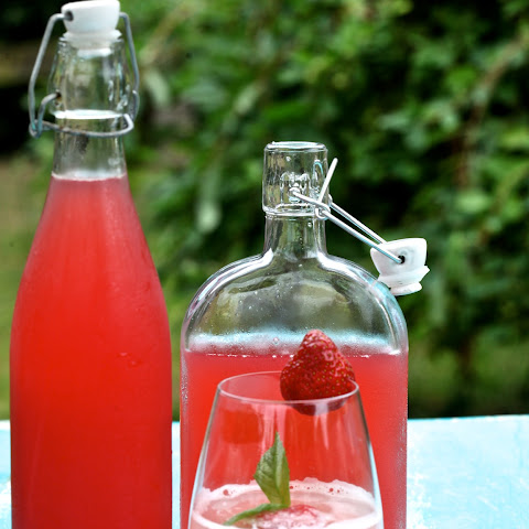 Time In A Bottle - Rhubarb Cordial