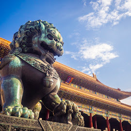 Forbidden City Lion by Tobias Andersson - Buildings & Architecture Statues & Monuments ( temple, lion, sky, blue, beijing, forbidden, city, china )