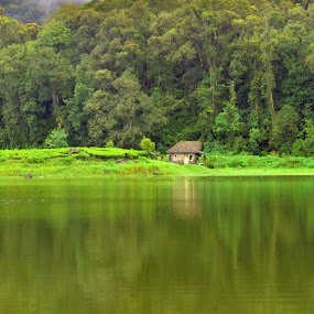 bamboo hut by Gunarsa Gunarsa - Novices Only Landscapes ( situ patengan, lake, ciwidey, green living, bamboo hut )