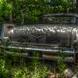 Cadillac, Cadillac... by Chris Cavallo - Transportation Automobiles ( car, old car, maine, cadillac, automobile, rusty, rust, decay, abandoned )