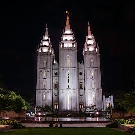 Salt Lake City Mormon Temple by Dan Kinghorn - Buildings & Architecture Places of Worship ( salt lake city mormon temple, mormon temple, salt lake city, places of worship )
