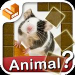 Who am I? -animal guess trivia Icon