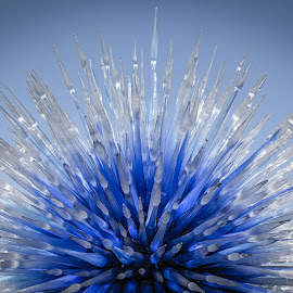 Starburst by Dave Lipchen - Artistic Objects Glass ( glass art, chihuly, blue, burst )