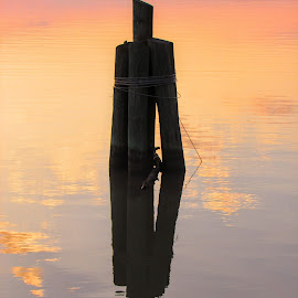 Still Waters by Rick Covert - Artistic Objects Other Objects ( still, reflections, arkansas, river, water, peaceful )
